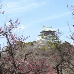 平日のセミリタイア小旅行(大阪城公園の梅)